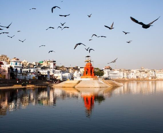 On the banks of Pushkar Ghat!